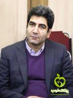 دکتر امین رفیعی پور - مشاور، روانشناس